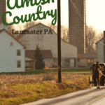 Amish Farm with horse and buggy