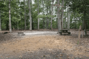 State Park Campground Site