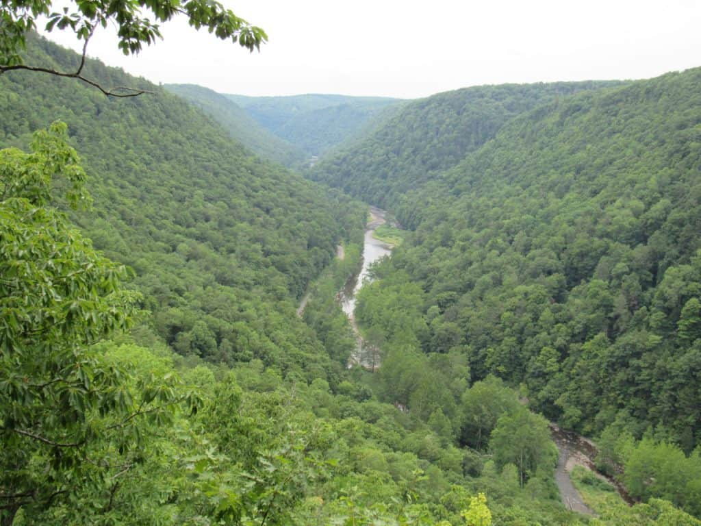 Pennsylvania's Grand Canyon, The Pine Creek Gorge