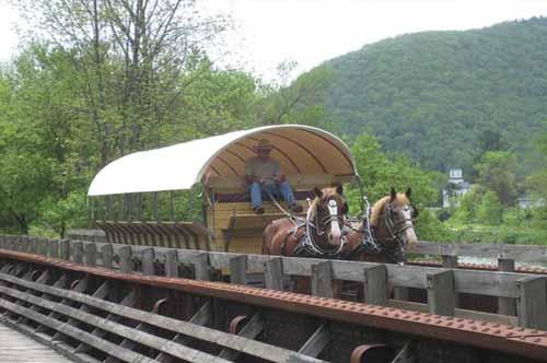 Horse and Wagon on Pine Creek Rail Trail