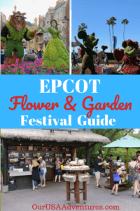 Images from Epcot Flower and Garden Festival