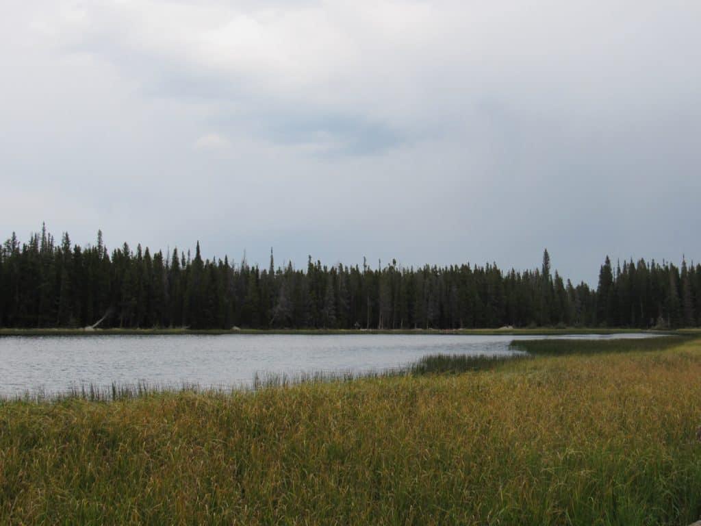 View of Bierstadt Lake