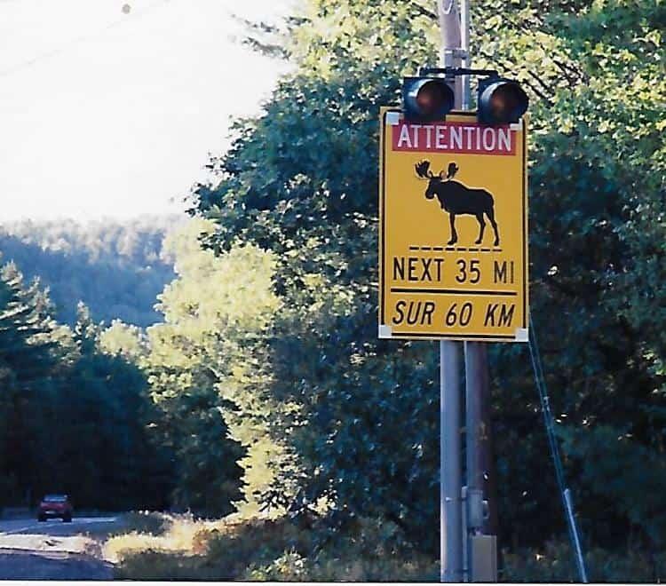 Moose Crossing sign in Moosehead Lake Maine