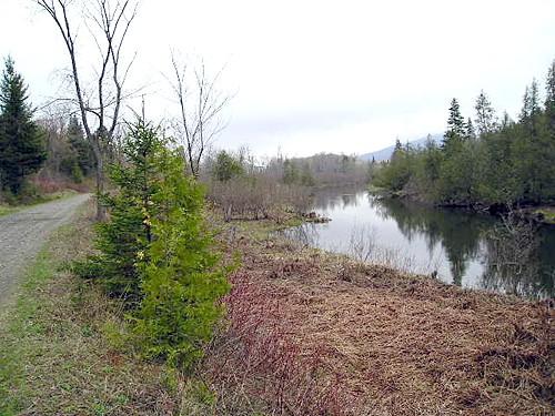 Bangor & Aroostook Trail